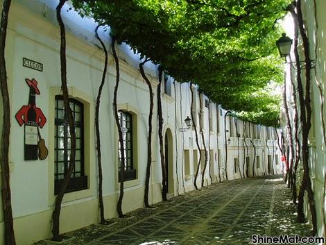 Jerez street, Spain
