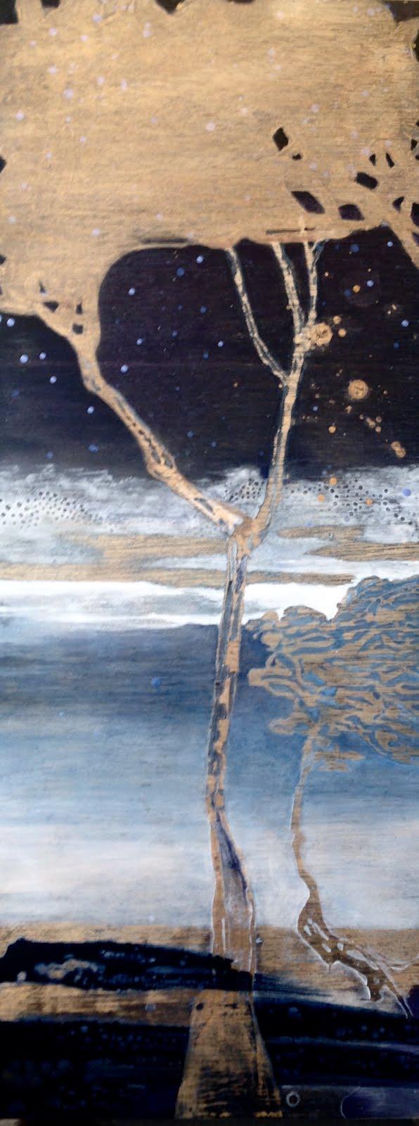 """""""Le ciel de nuit"""""""