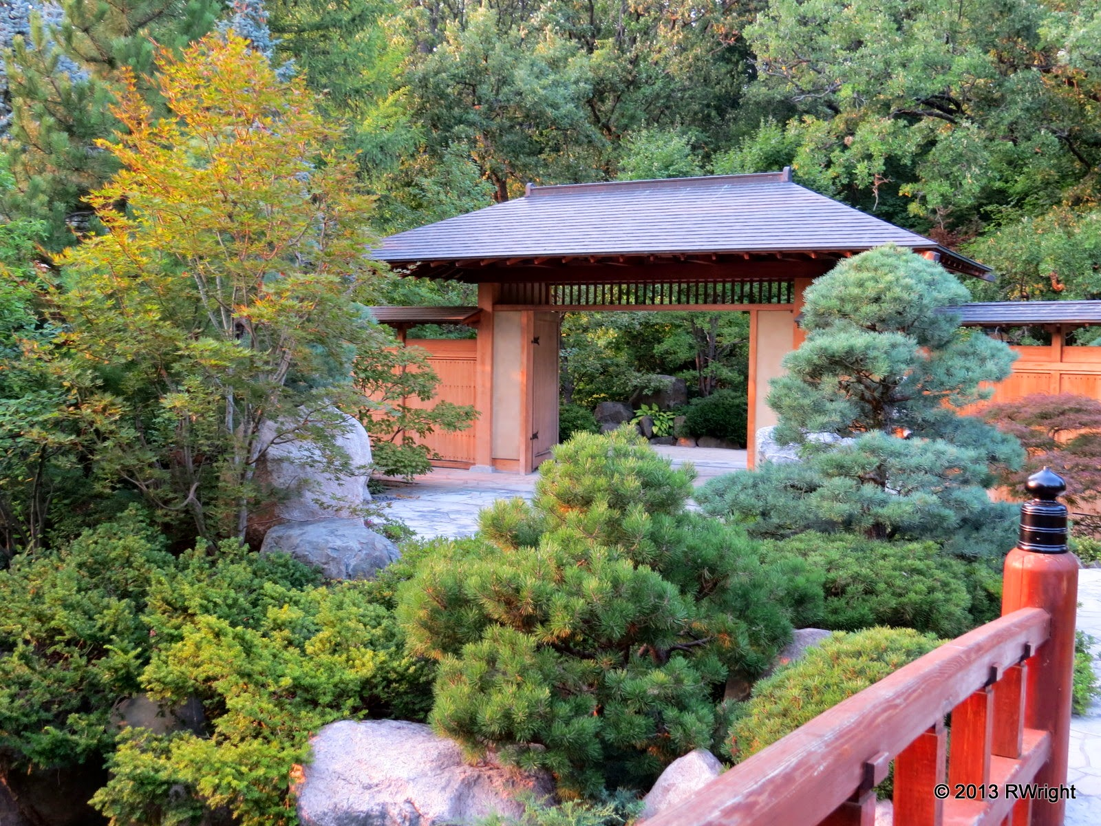 IMG 5152 - Anderson Japanese Gardens Illinois Road Trips