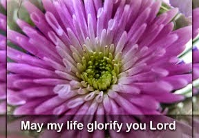 Glorify the Lord!