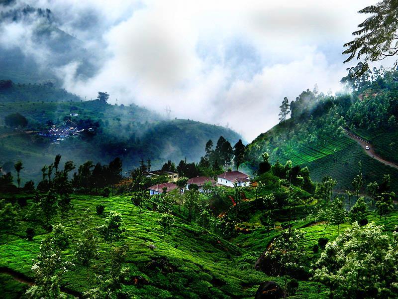 Honeymoon Place In Kerala Best Honeymoon Places In India