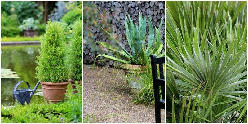 træ plantekasser omkring terrasse