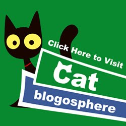 We Love The Cat Blogosphere!