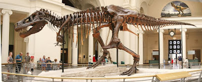 Esqueleto Tyrannosaurus Rex