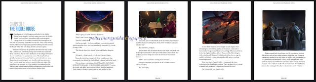 Anteprime dai nuovi e-book, HP e il Calice di Fuoco