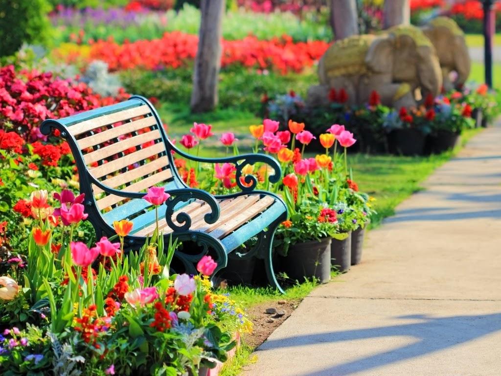"""<img src=""""http://2.bp.blogspot.com/-G5GUolsWO50/UtF14JZZHxI/AAAAAAAAHnU/TpFW9iCOgwg/s1600/parks-come-sit.jpeg"""" alt=""""park wallpapers"""" />"""