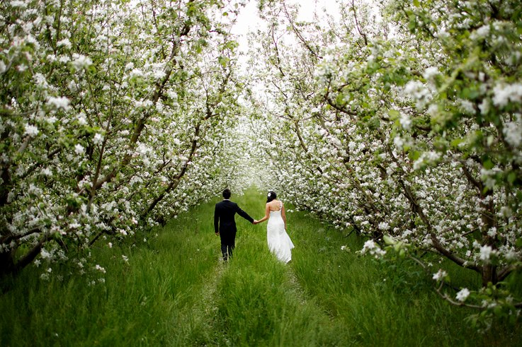 One perfect day outdoor wedding venues private spaces for Garden design yarra valley