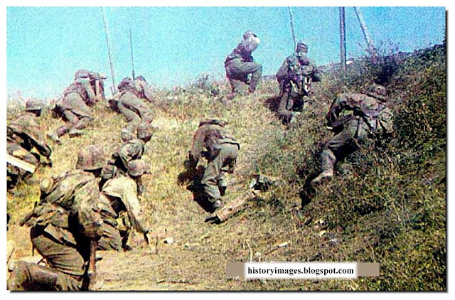 waffen ss color image