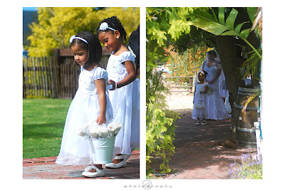 DK Photography Ash7 Alethea & Ashley's Wedding in Welgelee Wine Estate in Cape Wine Lands  Cape Town Wedding photographer