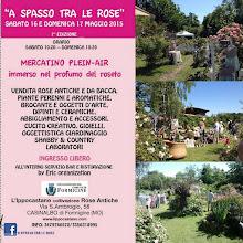 EVENTI - A Spasso Tra Le Rose