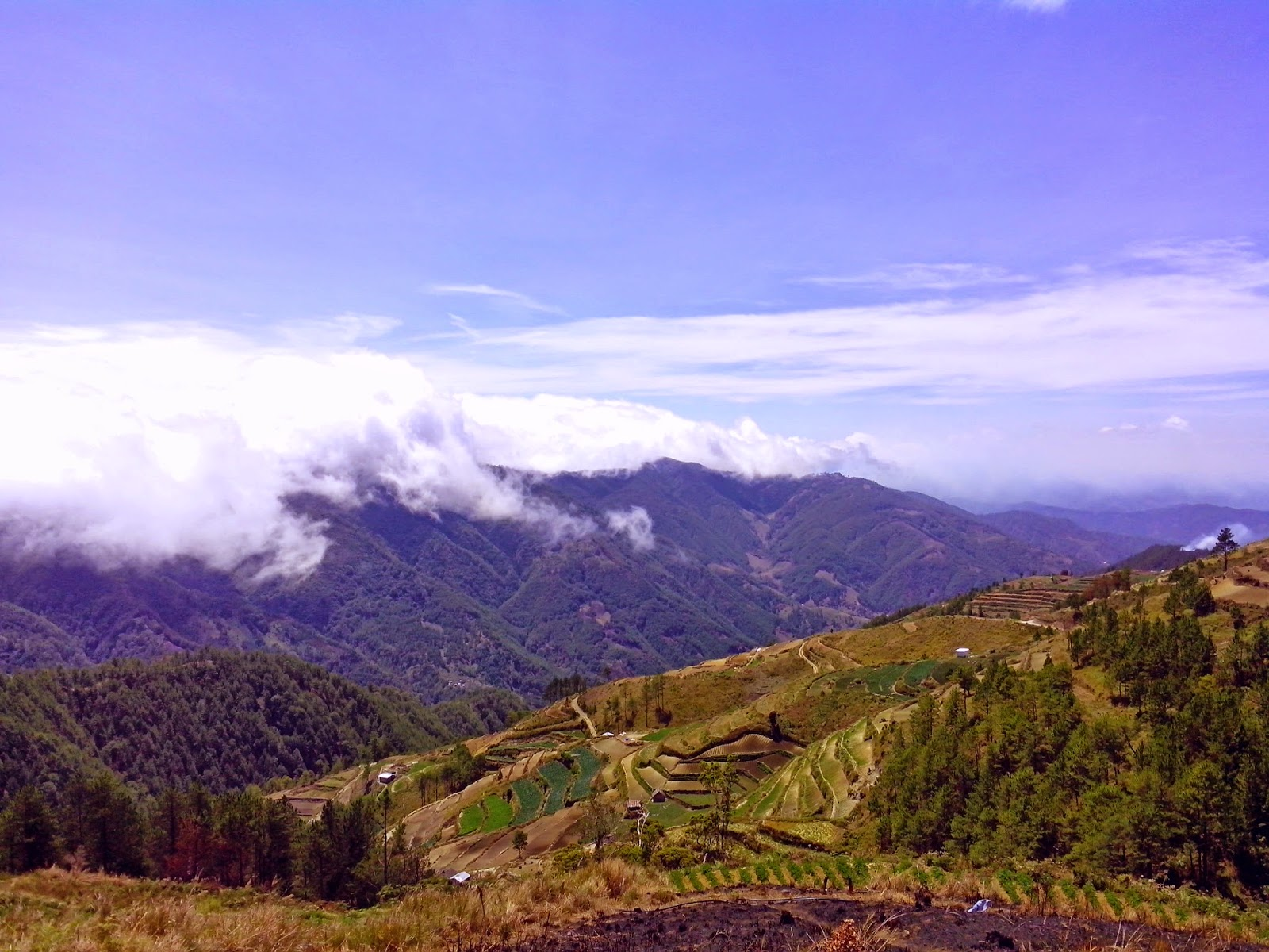 Jump Off Mt. Pulag Ambaneg Trail