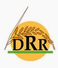 Directorate of Rice Research Recruitment 2014 Technical Assts, DEO, Project Asst, Office Assts – 17 Posts