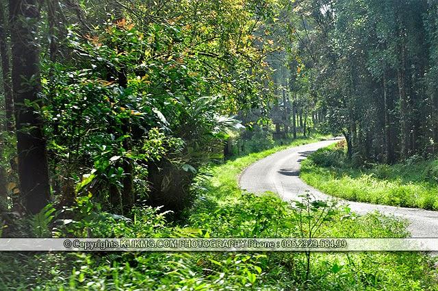 Pratin Nan Permai Photographer klikmg 4 ( Momom Darmawan 12 Th )