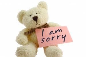 Saying i'm Sorry - teddy bear - gift