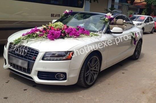 Cho thuê xe cưới Audi S5