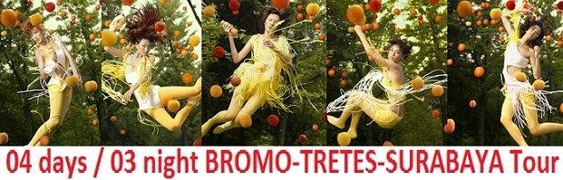 BROMO – TRETES – SURABAYA TOUR