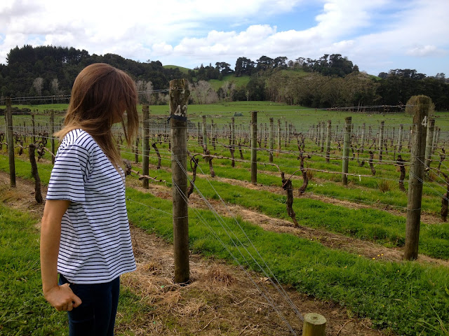 new_zealand_ransom_wines_vineyard_topshop_stripes