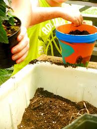 Creating!  Planting!  Kids!