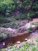 Rio Agua linda
