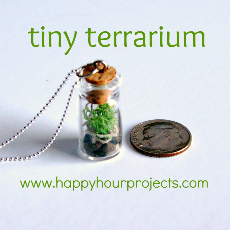 Tiny Terrariums for Earth DayHappy Hour Projects