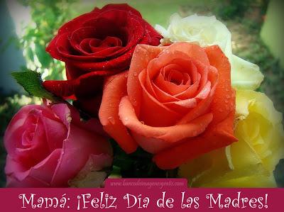 Rosas de colores con mensaje para el Día de las Madres