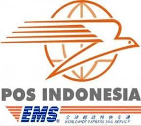 International Express Service