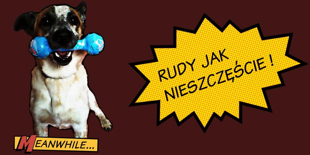 Rudy jak nieszczęście!