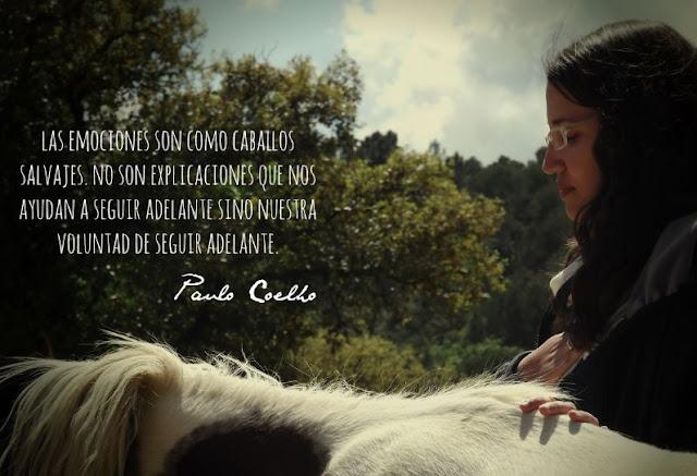 Raquel Cabalga Wedding Coaching blog Mi Boda Gratis coach asistido por caballos