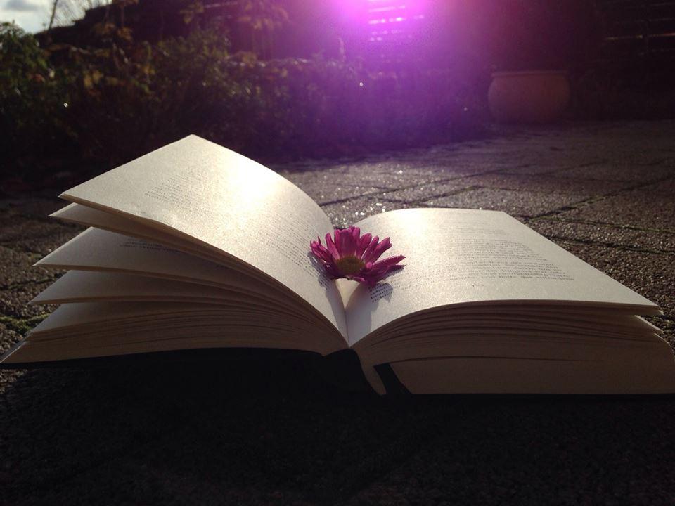 Bookpictures