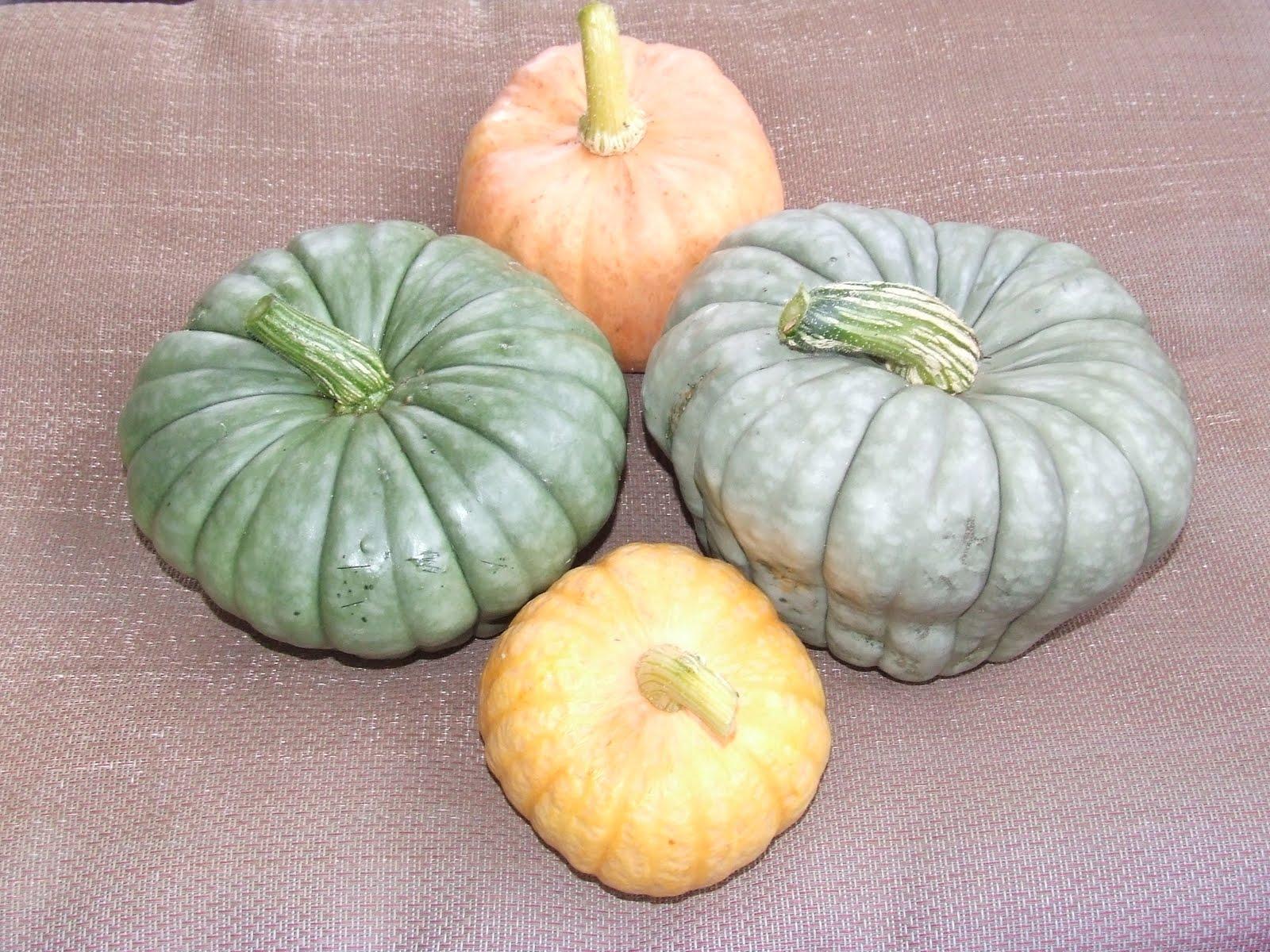 pumpkin shaped cheese ball appetizers