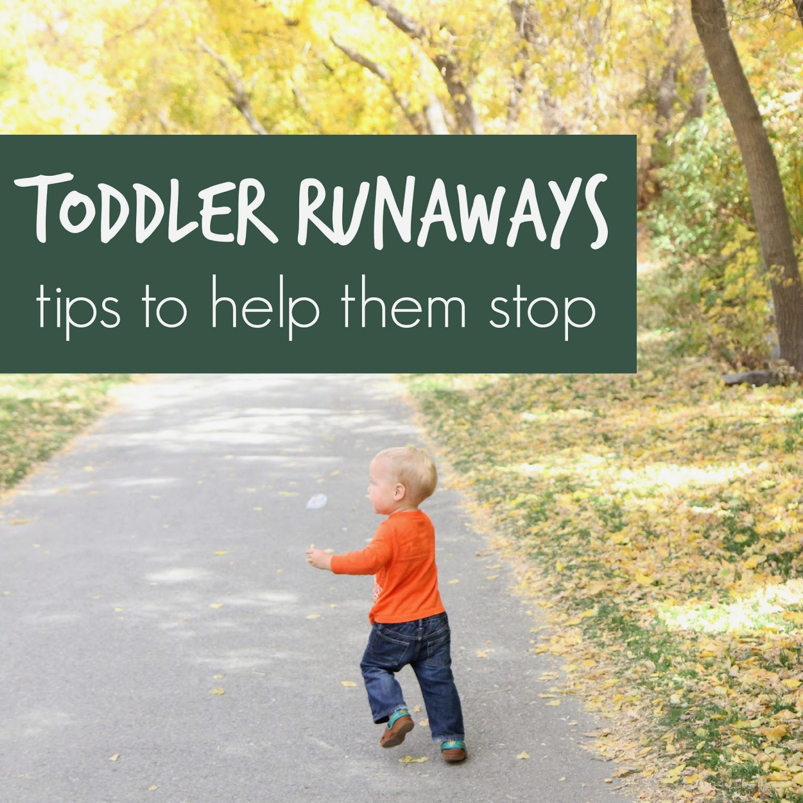 Over In Our Toddler Approved Positive Parenting Fb Group We've Been Talking  About Toddlers
