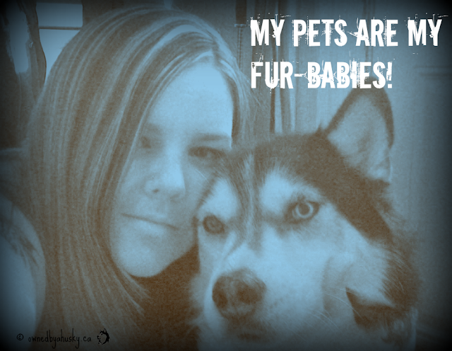 Do We Humanize Our Pets Too Much? #FurBabyLove