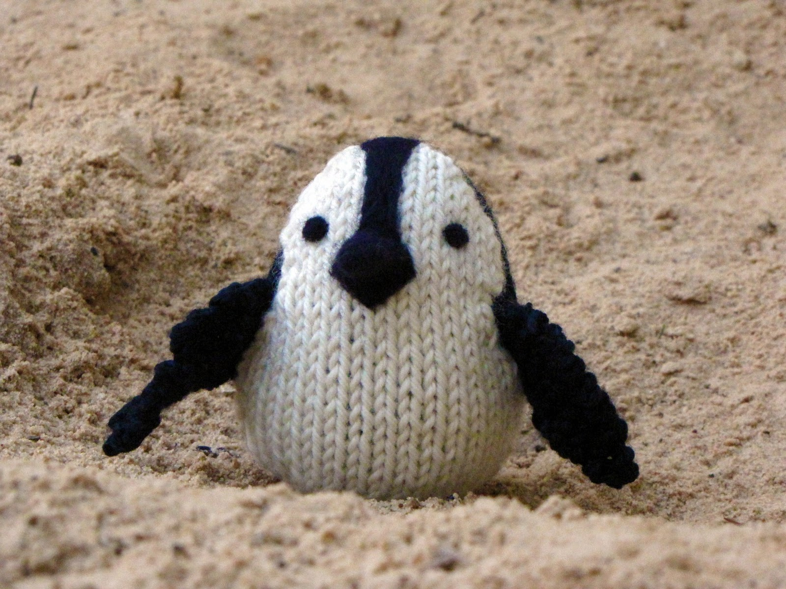 African Penguin Knitting Pattern - Natural Suburbia