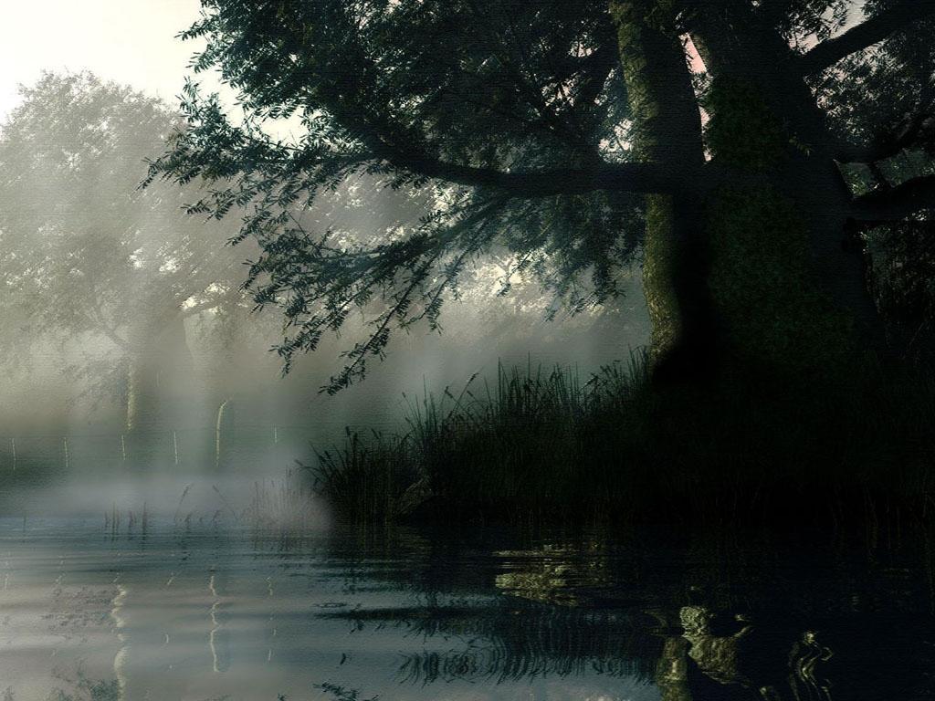 http://2.bp.blogspot.com/-GAgdDRNj9ec/Tj3JINHhGKI/AAAAAAAAIt0/a5Rz_TGpyLQ/s1600/Rain+Wallpapers+%25283%2529.jpg