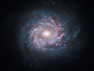 galaxia ngc 3982
