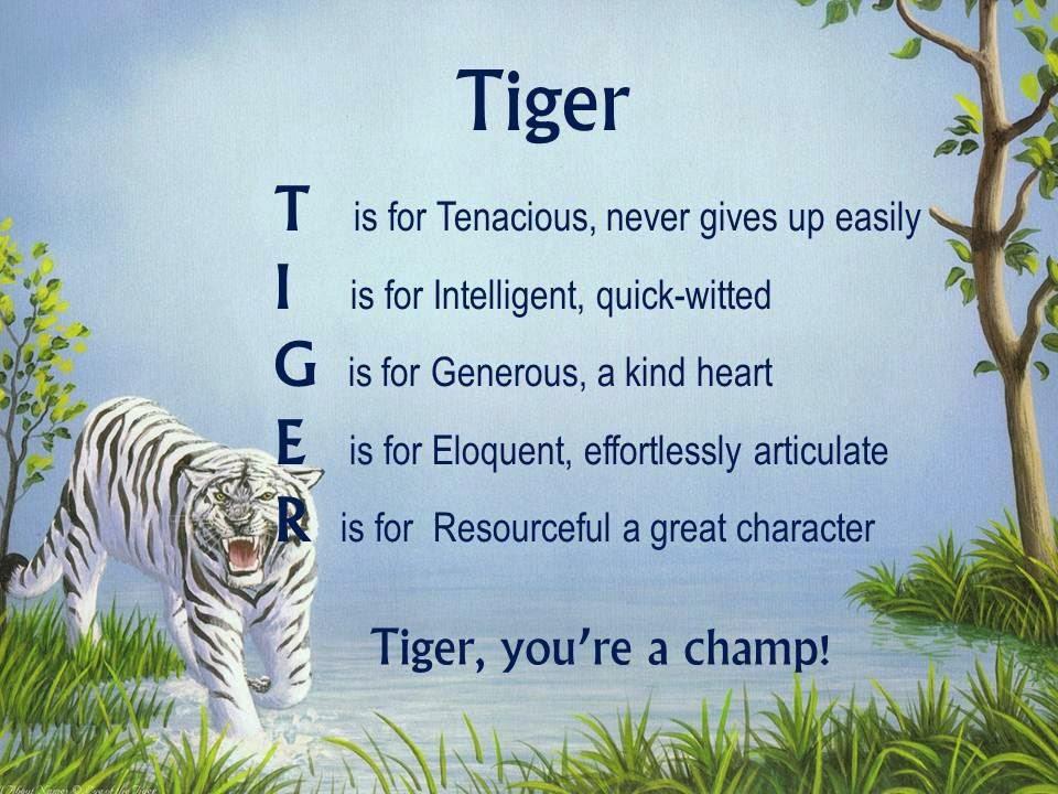 Acrostic Name Poems For Boys: Tiger