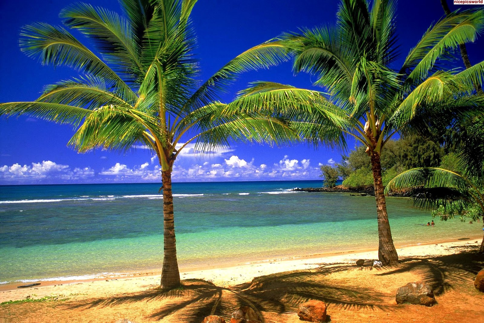 Beautiful Beach Desktop