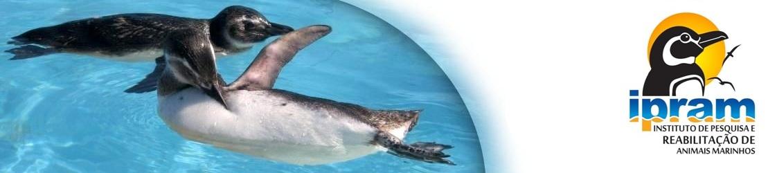 Instituto de Pesquisa e Reabilitação de Animais Marinhos - IPRAM
