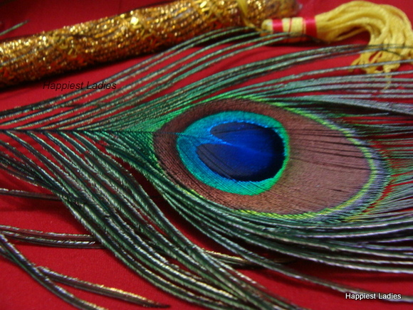 dressing up as krishna peacock feather