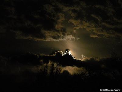 Flower Moon sky.