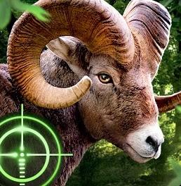 Wild Hunter New Version