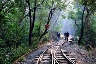 Mini Rail Track Sanjay Gandhi National Park Borivali Mumbai