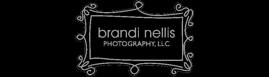 Brandi's Blog