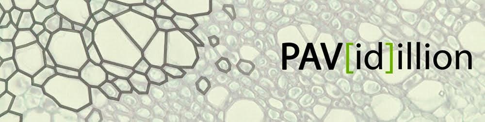 PAV(id)illion