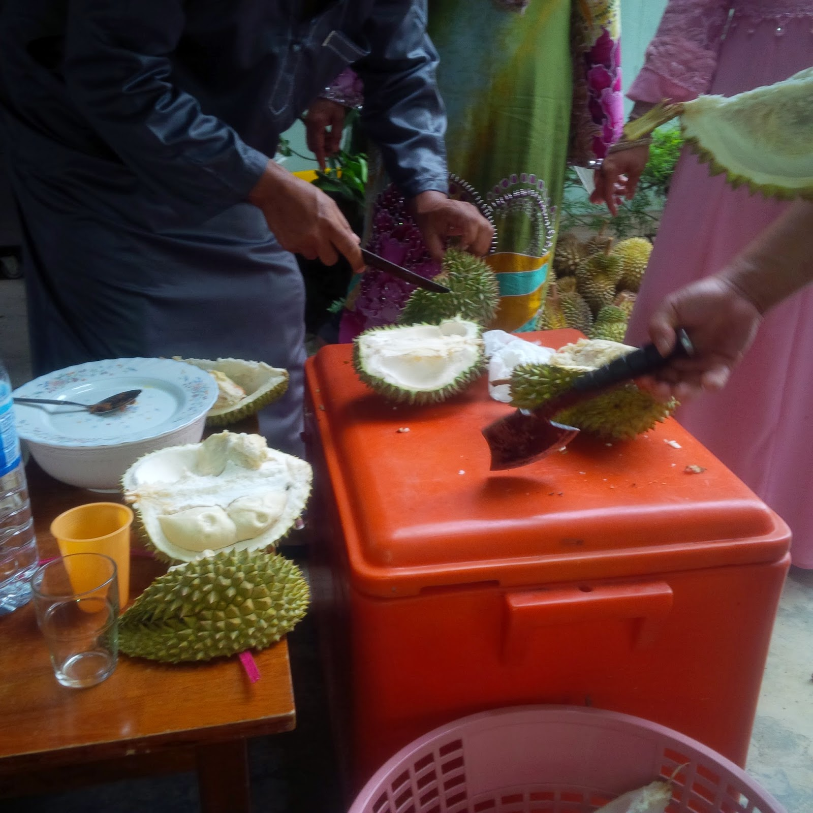 durian fruit, durian malaysia, durian taste, food, gardening, how to eat durian, how to plant durian, king of fruits malaysia,