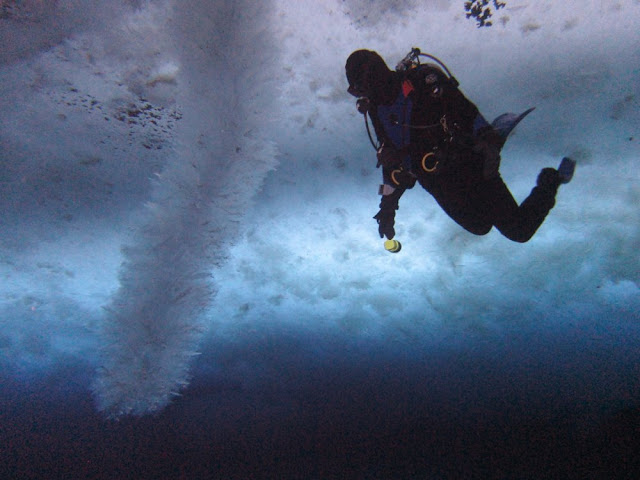 A diver examines a large brinicle.