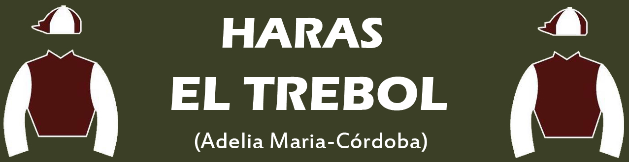HARAS EL TREBOL ESTABLE