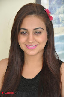 Aksha Latest Pictures at Rey Rey Success Meet  0002
