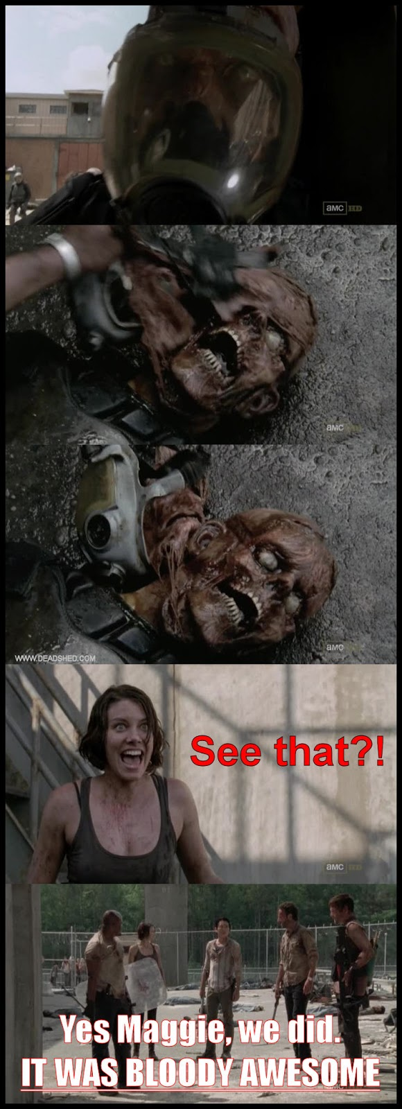 Maggie_Gas_Mask_Zombie_The_Walking_Dead_Season_3_Meme_DeadShed deadshed productions hershel vs puberty, and maggie loves gore