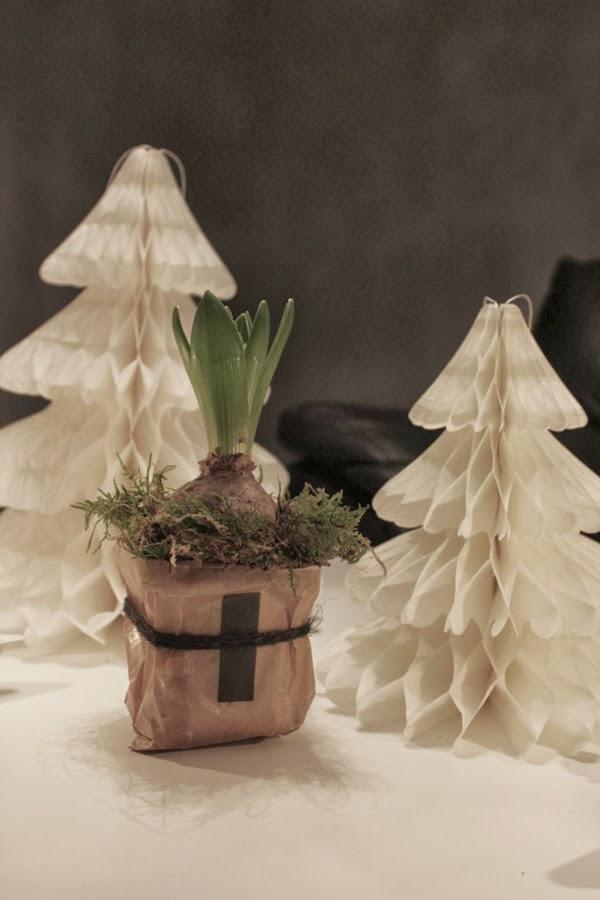 göra egna krukor, krukor av vaxpapper, diy papper, hyacinter till advent, advent 2013